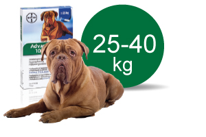 Image of   Advantage Vet. Opløsning 25-40 kg - 4 ml - 4 Pipe