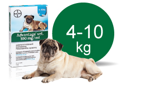 Image of   Advantage Vet. Opløsning 4-10 kg - 1 ml - 4 Pipe
