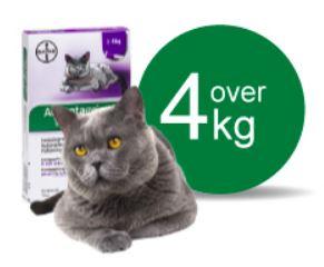 Image of   Advantage Vet. Opløsning Kat 4-8 kg - 4 Pipe