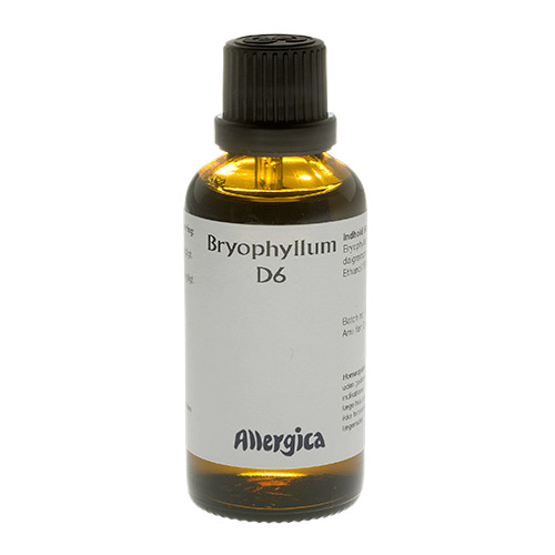Image of Allergica Bryophyllum D6 - 50 ml