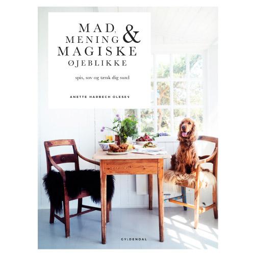 Image of   Gylendal Mad Mening & Magiske Øjeblikke Forfatter Anette Harbech Olesen - 1 stk