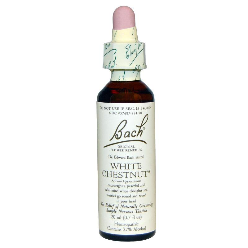 Image of Bachs Hestekastanie (White Chestnut) - 20 ml